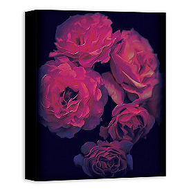Midnight Rose Wall Art