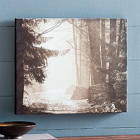 Through the Woods Artwork