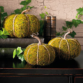 Mossy Pumpkins, Set of Three
