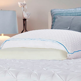 Sealy Half and Half Memory Foam Pillow