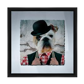 Hipster Bulldog Wall Art