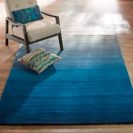 Horizons Big Blue Area Rug