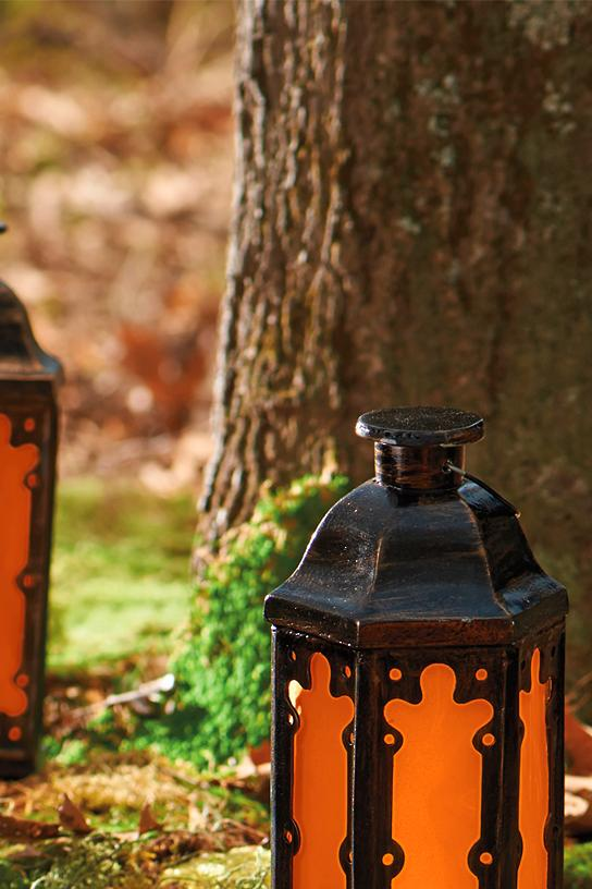 Battery Operated Fire And Ice Lantern Grandin Road