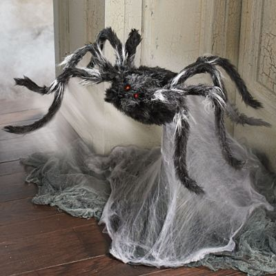 Animated Haunted Jumping Spider Grandin Road