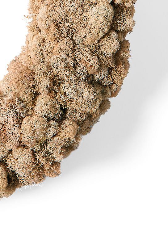 Natural moss wreath grandin road for Natural moss bath mat