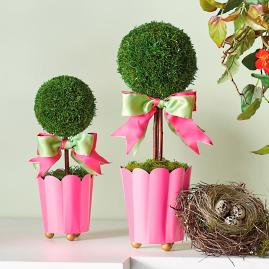 Lulu Potted Topiary