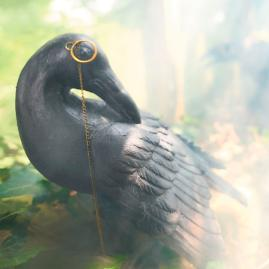 Looking Back Raven with Monocle