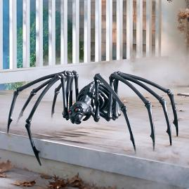 Black Skeleton Spider