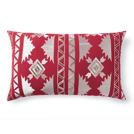 Aztec Embroidered Pillow |