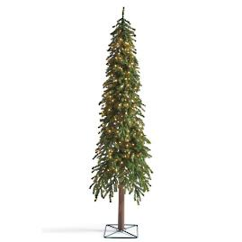 Pre | Lit Evergreen Alpine Trees |