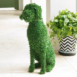 Casey Faux Boxwood Garden Dog