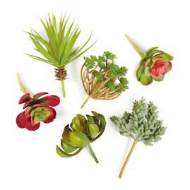 Faux Succulent Stems, Set of Six