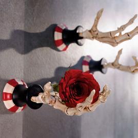 Skeleton Hand Hooks, Set of Three