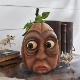 Expressive Herbert Pumpkin