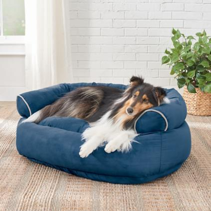 Sofa Dog Bed Roselawnlutheran