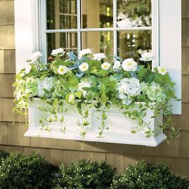 Devon Window Box |