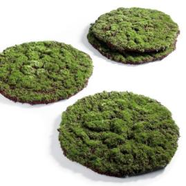 Easter Moss Runner and Placemats