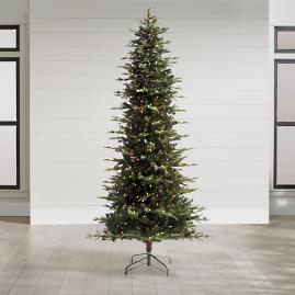 Mountain Pine Pencil Christmas Tree