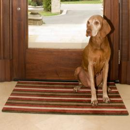 Designer Eco | friendly Pet Door Mat |