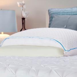 Sealy Half and Half Memory Foam Pillow