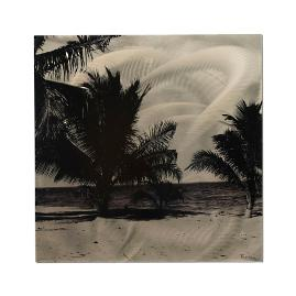 Monochrome Palms Metal Art