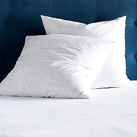 Two Pack Feather Filled Euro Pillows