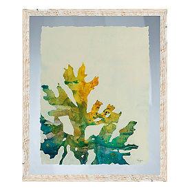 Seaweed Wall Art IV