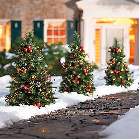 Set of Two Mackinley Cordless Pathway Trees