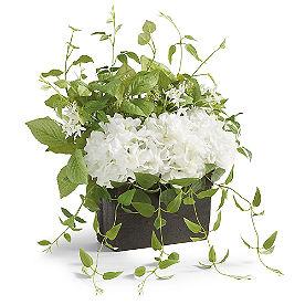 White Garden Window Box Filler
