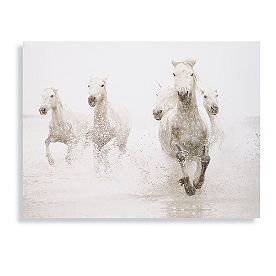 Beach Horses Running Wild Wall Art
