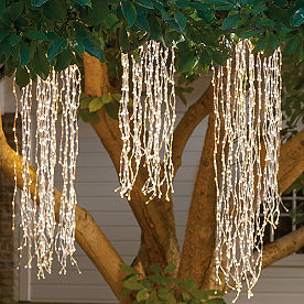 Weeping Willow Lights