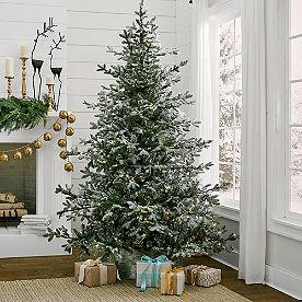 Aspen Pine Flocked Tree