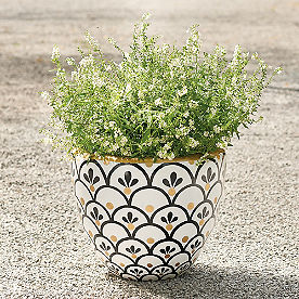 Cecelia Planter