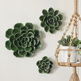 Succulent Wall Art, Set of Three