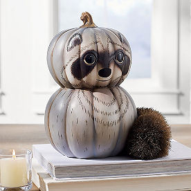 Woodland Pumpkin, Raccoon
