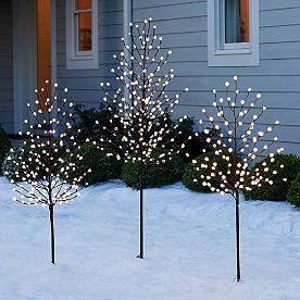 Globe Light Twig Tree