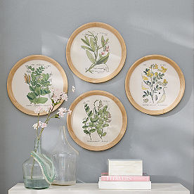 Botanical Round Wall Art, Set of Four