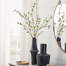 White Quince Stem, Set of Three
