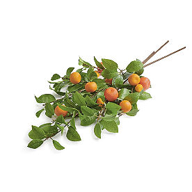 Tangerine Branch, Set of Three