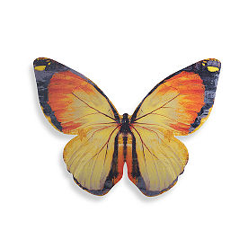 Acrylic Butterfly Art