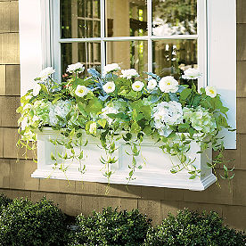 Devon Window Planter
