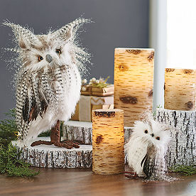 Long-eared Owls, Set of Two