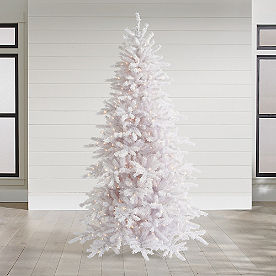 White Iced Fir Tree