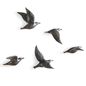 Set of Five Bone China Flying Gulls