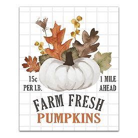Farm Fresh Pumpkins Canvas