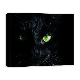 Black Cat Eye Canvas Wall Art