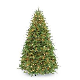 Pre-lit Davidson Fir Tree
