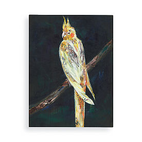 Pretty Cockatoo Wall Art