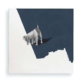 Lost Puppy II Wall Art