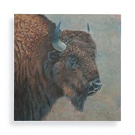 Buffalo Bruce Wall Art